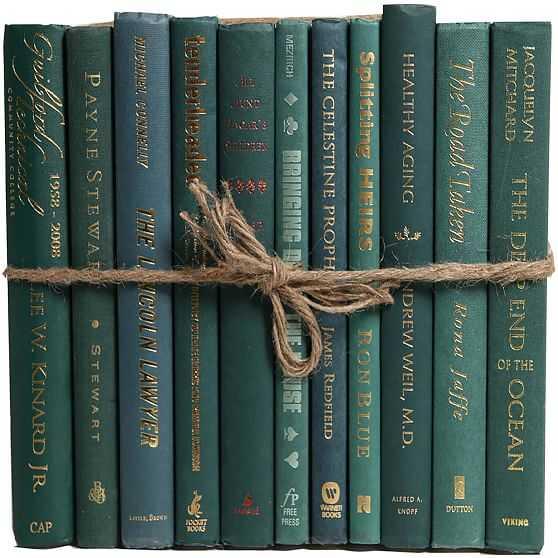 ColorPak Modern Book, Forest - West Elm