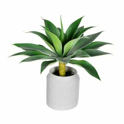 Artificial Agave Plant in Pot - Wayfair
