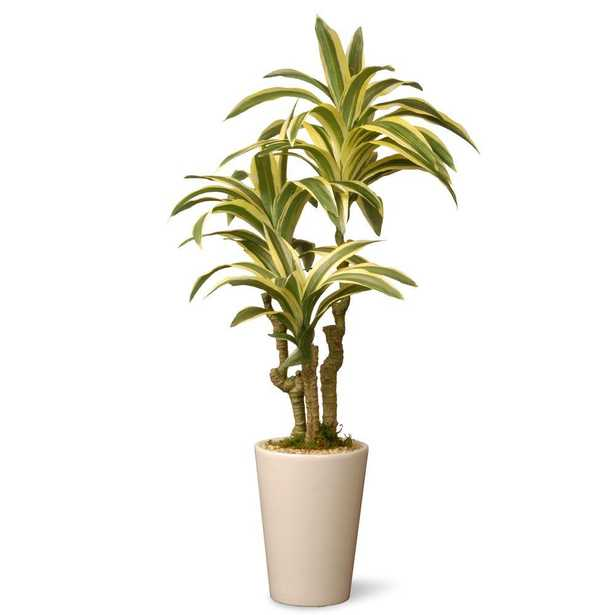 21 in. Garden Accents Artificial Dracaena Plant - Home Depot