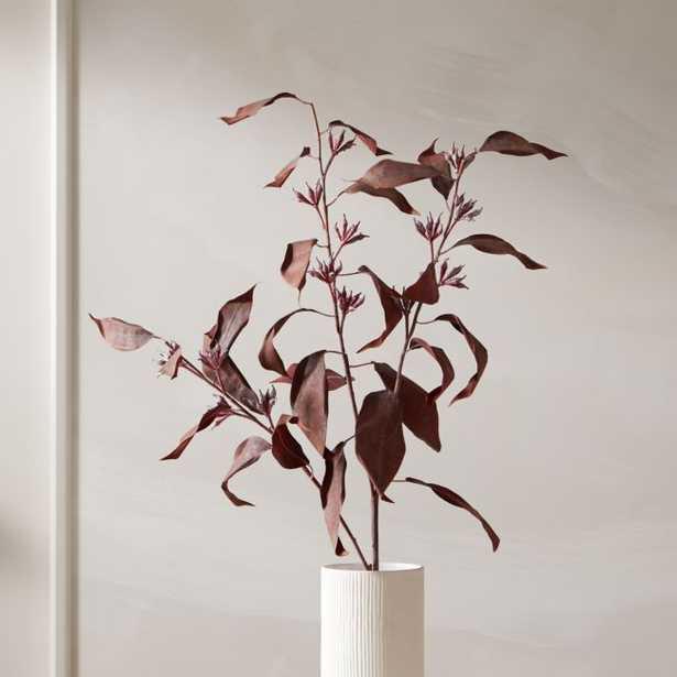 "Red Eucalyptus Stem 39"" - CB2"