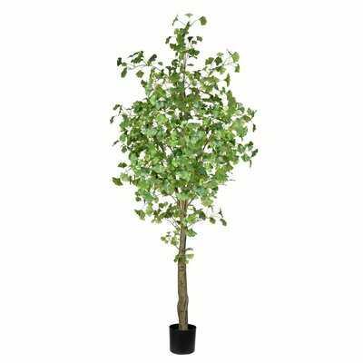 Artificial Ginkgo Tree in Pot - Wayfair