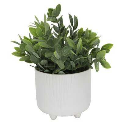 4.5'' Artificial Eucalyptus Plant in Planter - Wayfair