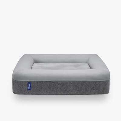 Casper Dog Bed - AllModern