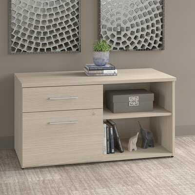 Storage Cabinet - Wayfair