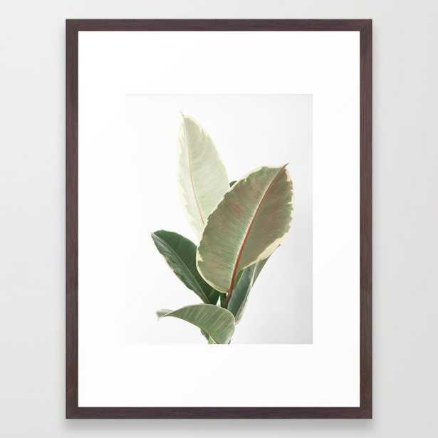 Ficus Teneke Framed Art Print by Cassia Beck - Conservation Walnut - MEDIUM (Gallery)-20x26 - Society6
