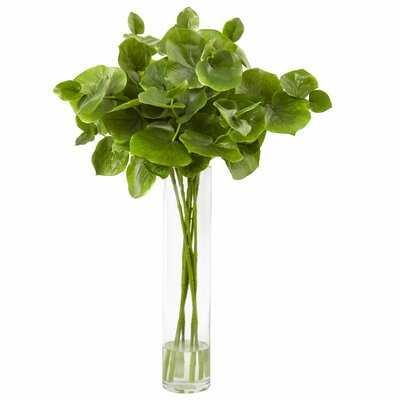 Lotus Branch Succulent Plant in Decorative Vase - Wayfair