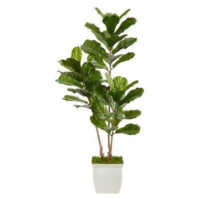 5.5Ft. Fiddle Leaf Artificial Tree In White Metal Planter UV Resistant (Indoor/Outdoor) - Wayfair