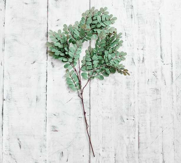 Faux Robinia Branch, Green - Pottery Barn