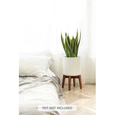 Plant Stand, Fit 10 Inch Plant Pot - Wayfair