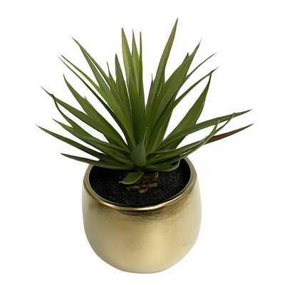 "7"" Sword Grass In Metallic Ceramic Pot - Wayfair"