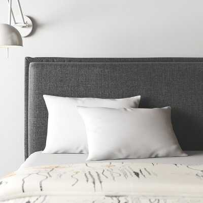Dominika Premium Down Pillow Insert - AllModern