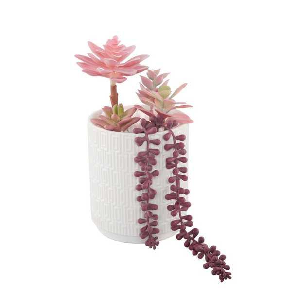 Flora Bunda 12 in. Pink Succulents in 5 in. Greco Ceramic Pot - Home Depot