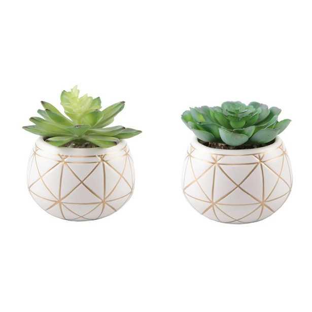 FLORA BUNDA Set of 2 Succulent in 4 in. GEO Gold Round Ceramic Planter - Home Depot