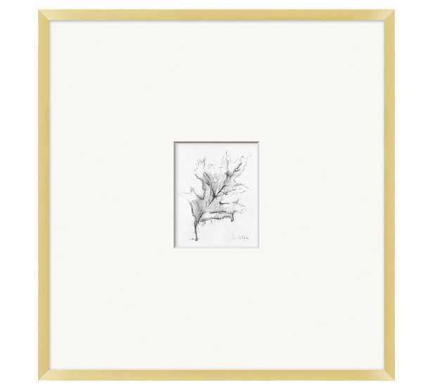 "Charcoal Leaf Sketch Framed Print, 25"" x 26"" - Pottery Barn"