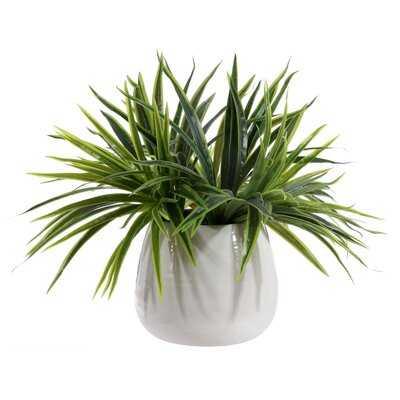 Faux Orchid Potted Plant - Wayfair
