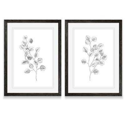 'Eucalyptus Sketch III' by Vincent Van Gogh - 2 Piece Picture Frame Drawing Print Print Set - Wayfair