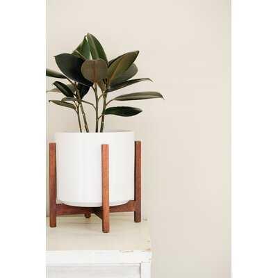 Hamler Ceramic Pot Planter - AllModern