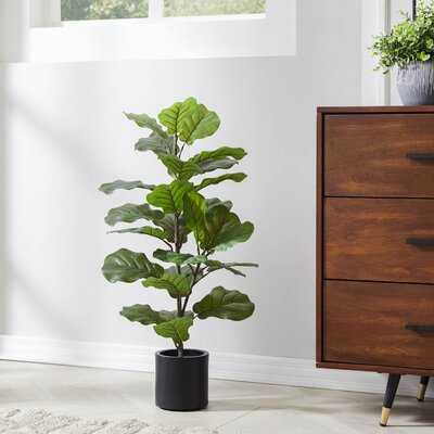 "Compact 32"" Fiddle Leaf Tree-white - Wayfair"