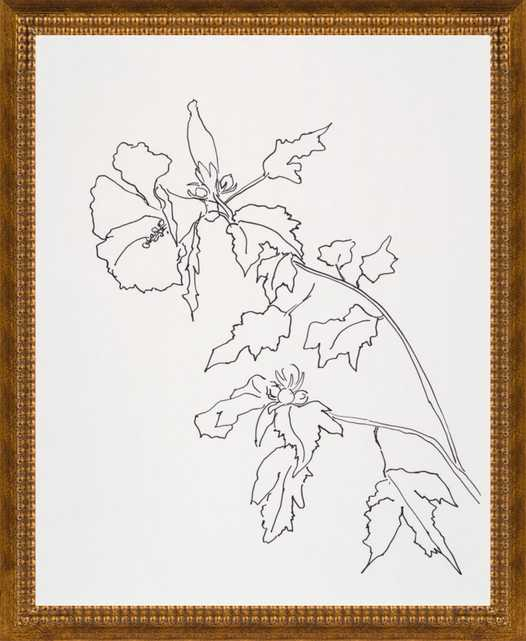 Rose of Sharon Flower by Casey Chalem Anderson for Artfully Walls - Artfully Walls