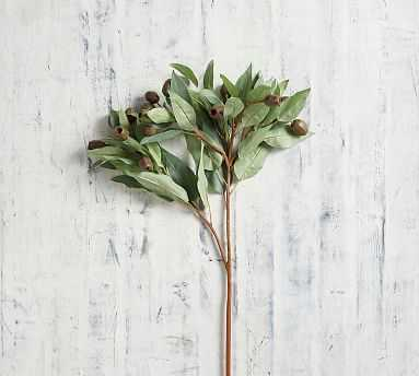 Faux Budding Eucalyptus Branch, Green, One - Pottery Barn
