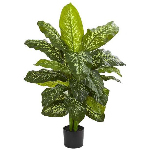 """Dieffenbachia Faux Plant, 42"""" - Pottery Barn Teen"""