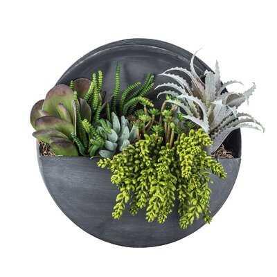 Wall Hanging Foliage Plant - Wayfair