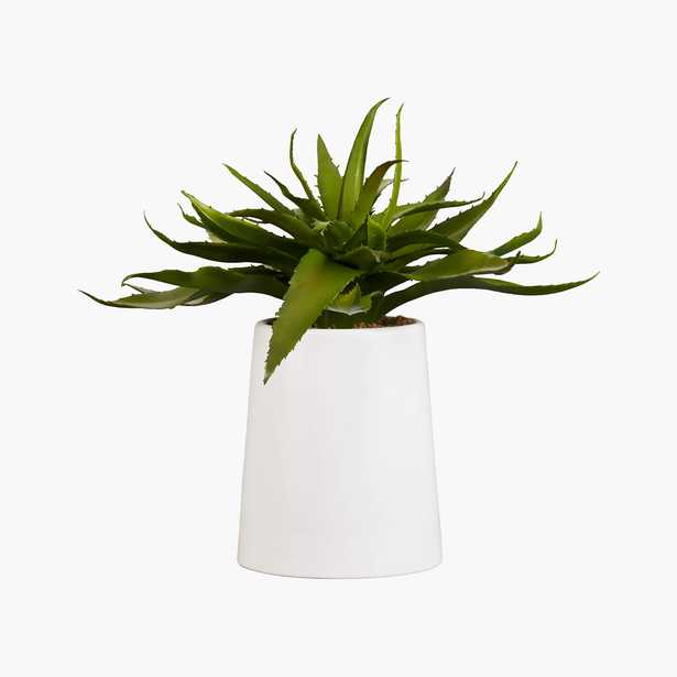 """Potted Faux Aloe, 9"""" - CB2"""