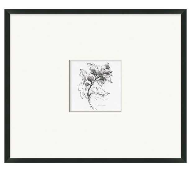 """Branch And Berries Framed Print, 26"""" x 27"""" - Pottery Barn"""