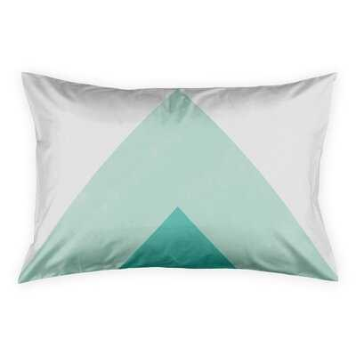 Noriega Turquoise Pillow Sham - Wayfair