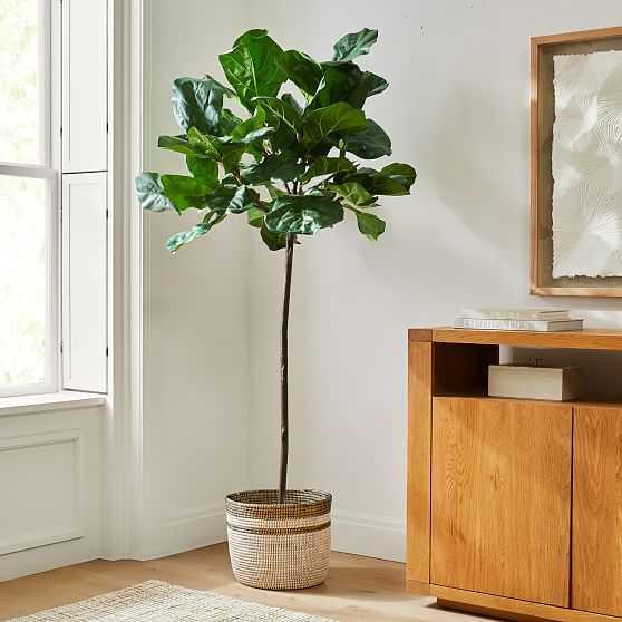 Faux 7' Fiddle Leaf Fig & Colorblock Basket Floor Planter Set - West Elm
