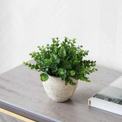 5'' Artificial Succulent Plant in Pot - Wayfair