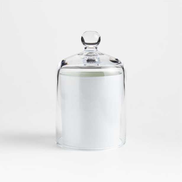 Glass Cloche - Crate and Barrel