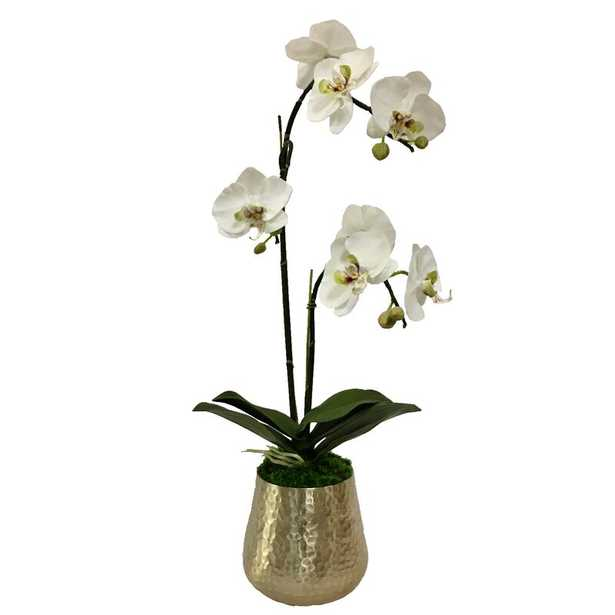Gold Metal Hammered Vase Large - White & Purple Double Orchid Artificial - Perigold