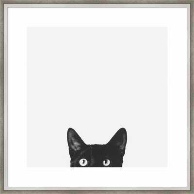 Curiosity (Cat) - Picture Frame Photographic Print on Paper - Wayfair
