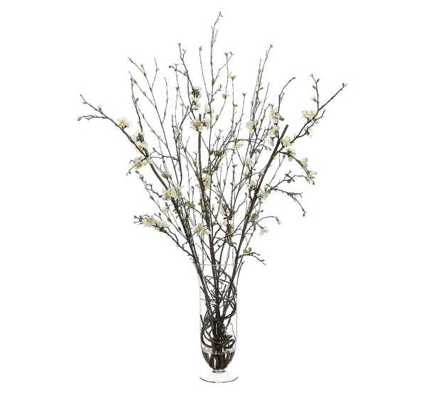 Faux Quince Blossoms With Twigs In Glass Vase - Pottery Barn