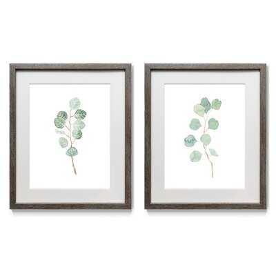 Soft Eucalyptus Branch III - 2 Piece Picture Frame Print Set on Paper - Wayfair