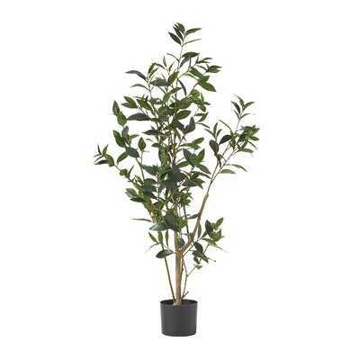 """43"""" Artificial Laurel Tree in Pot - Wayfair"""