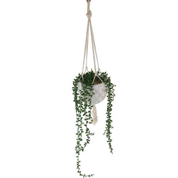 Flora Bunda 32 in. Artificial String of Pearls in Macrame Hanging Ceramic Planter - Home Depot