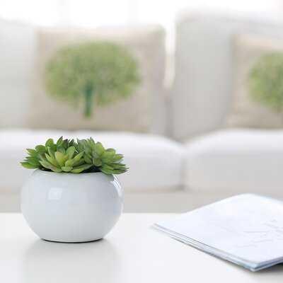 "1"" Artificial Succulent in Pot - Wayfair"