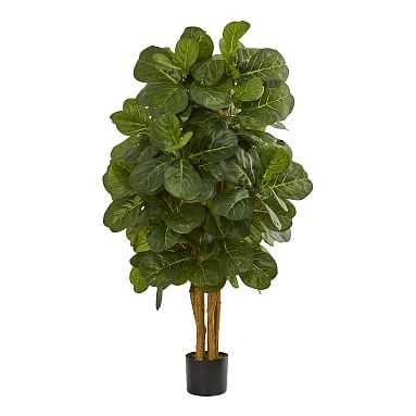 Faux Potted Fiddle Leaf Fig Tree - Pottery Barn Teen