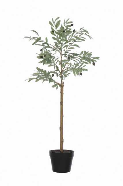 Potted Faux Olive Artificial Flower - Nomad Home