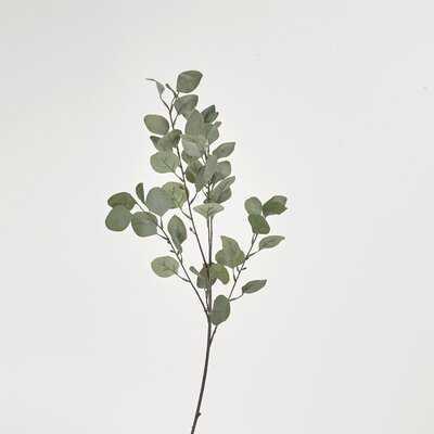 Silver Dollar Branch - Wayfair