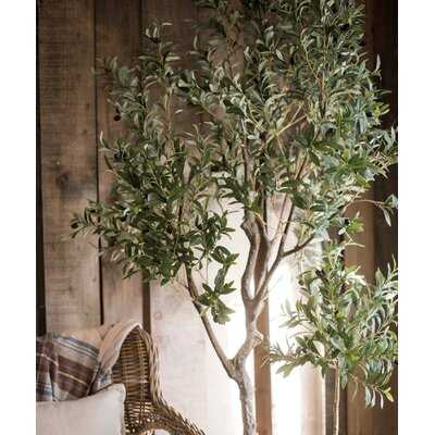 """Large Artificial Olive Tree 94"""" Tall - Wayfair"""