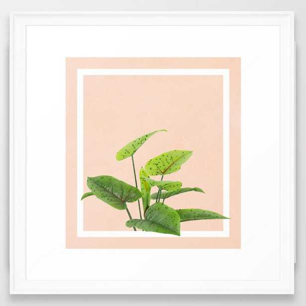Botanical Art #society6 #decor #lifestyle #buyart Framed Art Print by 83 Orangesa(r) Art Shop - Scoop White - MEDIUM (Gallery)-22x22 - Society6