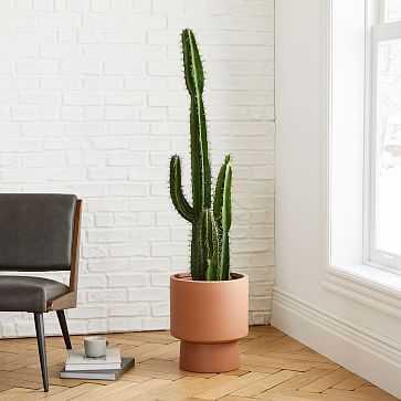 Faux Potted Cactus + Bishop Terracotta Planter Bundle - West Elm