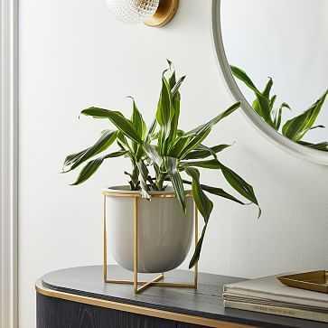 Eden Cross Base Tabletop Planter, White/Brass, Medium - West Elm
