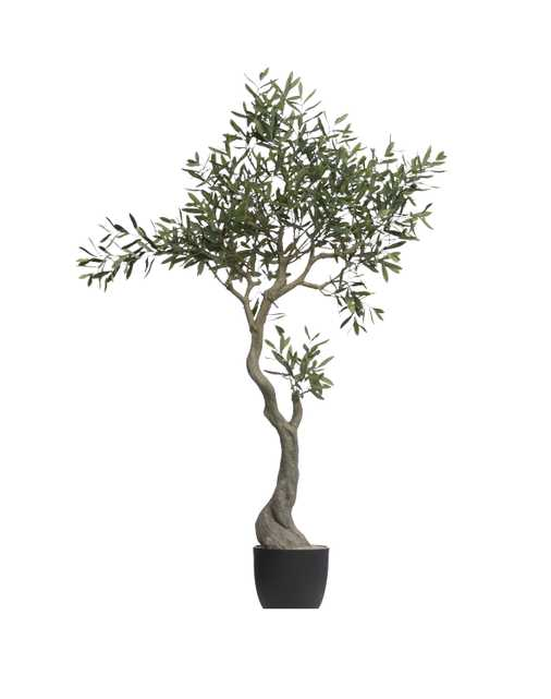 """60-1/4""""H Faux Olive Tree in Pot - Nomad Home"""