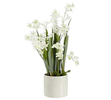 Faux Orchid in Ceramic Pot, Neutral, Large - Pottery Barn
