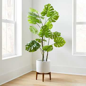 Faux Potted Monstera, 5' - West Elm