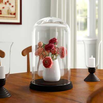 Keeley Decorative Glass Dome Bell Jar with Wood Base - Wayfair